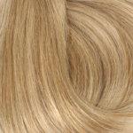 human-hair-kleur-10-16