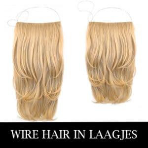 WIRE-HAIR-LAAGJES-2019